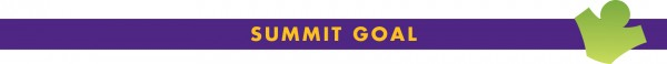 Summit-Goal-600x58